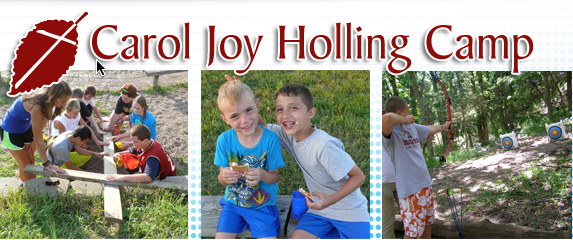 Carol Joy Holling Camp